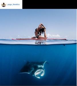 yoga vertiger instagram (3)
