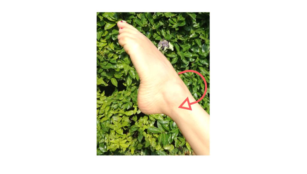 Rotazione caviglia