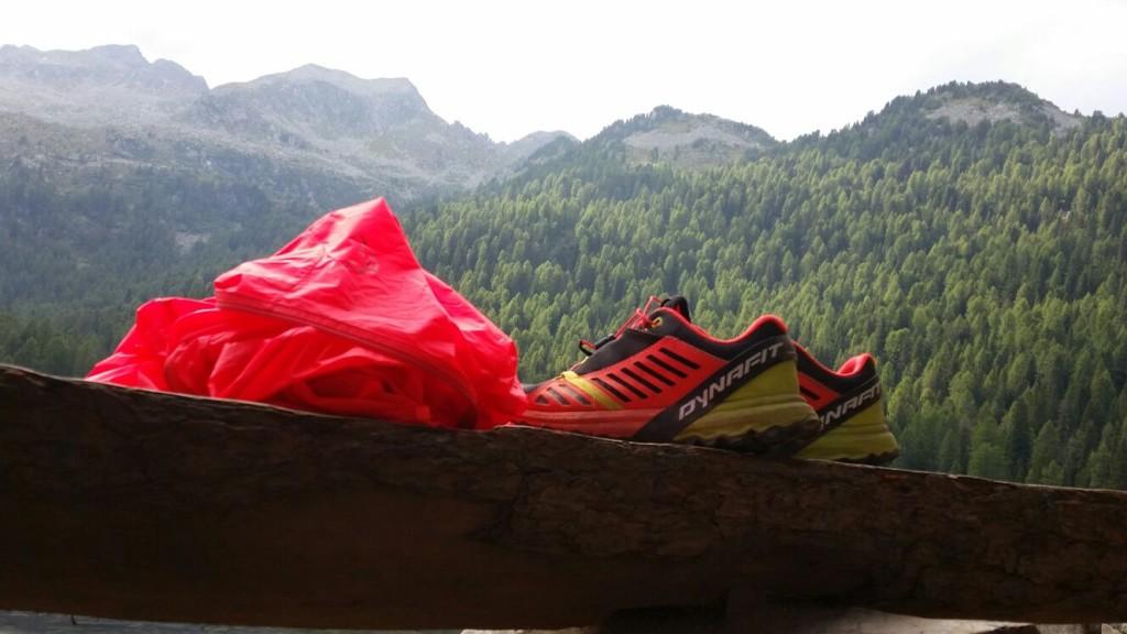 trail running laura dynafit vertige (2)